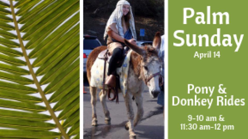 Palm Sunday Pony & Donkey Rides