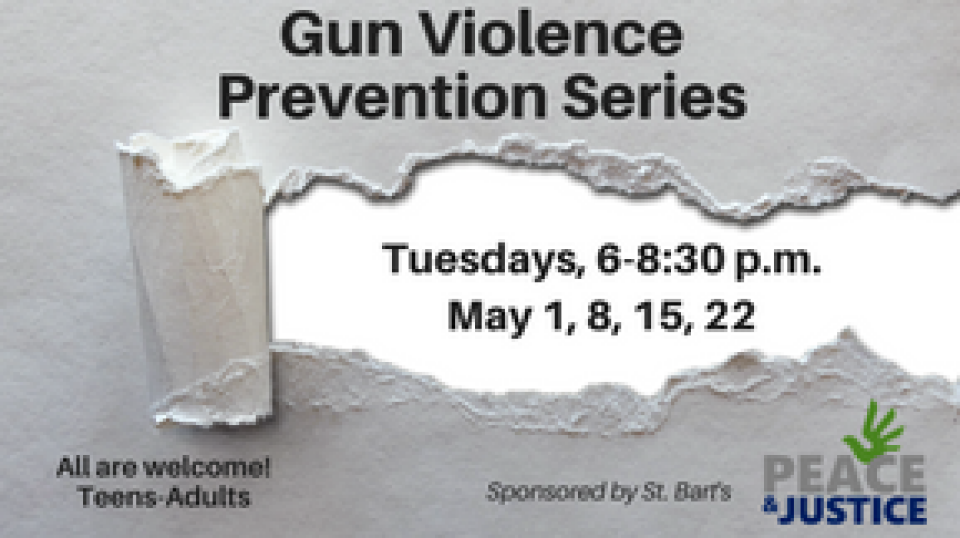Gun Violence Prevention Study Series