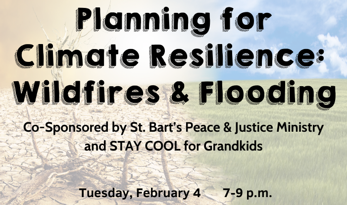 Planning for Climate Resilience